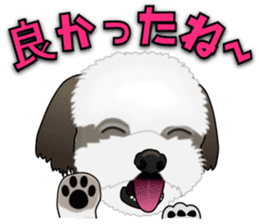 Cute Shih Tzu sticker #8836236
