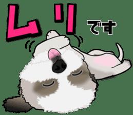 Cute Shih Tzu sticker #8836239