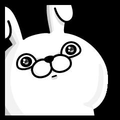 Rabbit100% daily use