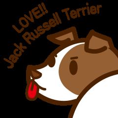 LOVE Jack Russell Terrier