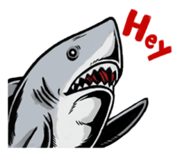 Fascinating shark (English) sticker #8935308