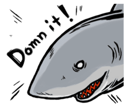 Fascinating shark (English) sticker #8935324