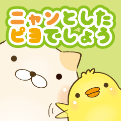 Everyday cat and chick