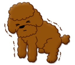 I Love Toy Poodle sticker #8956799