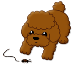 I Love Toy Poodle sticker #8956810