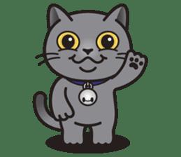 MIA the British Shorthair Cat sticker #9022472