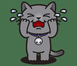 MIA the British Shorthair Cat sticker #9022477