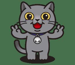MIA the British Shorthair Cat sticker #9022484
