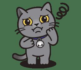 MIA the British Shorthair Cat sticker #9022488
