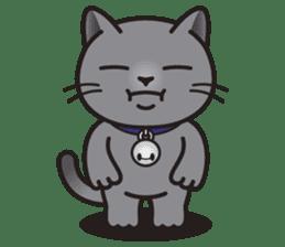 MIA the British Shorthair Cat sticker #9022500