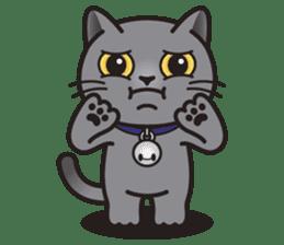 MIA the British Shorthair Cat sticker #9022506