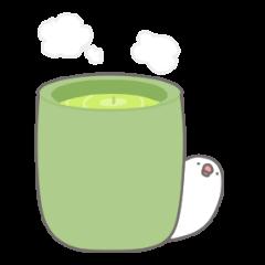 Yuru kawaii Java sparrow