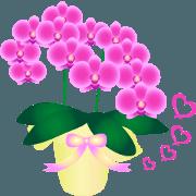 สติ๊กเกอร์ไลน์ Happy Blessing Flowers,movie