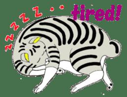 "Japanese Bobtail cat ""TAP"" sticker #9083991"