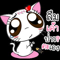 Memy-Meo (Vol. 1) The TLC Cats.