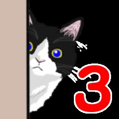 Lovery kitten vol.3