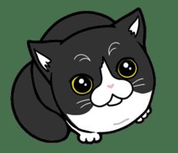 Ratchet-mouthed Mink sticker #9147971