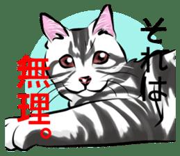 Lazy cat sticker + sticker #9159834