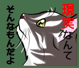 Lazy cat sticker + sticker #9159836