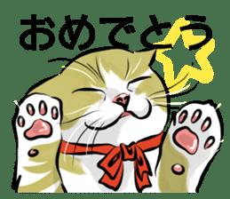 Lazy cat sticker + sticker #9159840