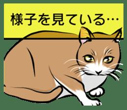 Lazy cat sticker + sticker #9159852