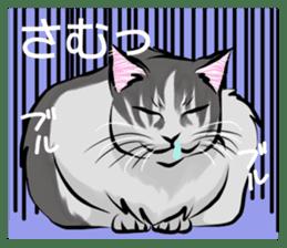 Lazy cat sticker + sticker #9159854