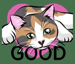 Lazy cat sticker + sticker #9159859