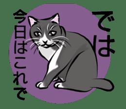 Lazy cat sticker + sticker #9159863
