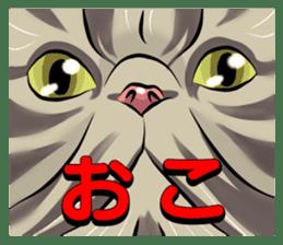 Lazy cat sticker + sticker #9159868