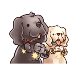 Everyday! American cocker spaniels sticker #9244844