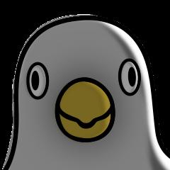 A white bird 3