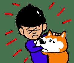 Shiba inu MOMO chan the third as well 12 sticker #9269446