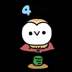 Mamefuku of barn owl4