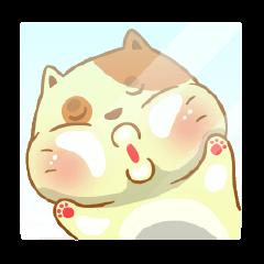 Jojo Cat