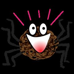 Kinky Spider
