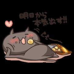 Kuro the cat Part2