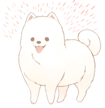 WeatherWea-Pomeranian's days. sticker #9382912