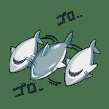 Shark -chan sticker #9391015