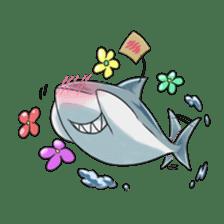 Shark -chan sticker #9391020