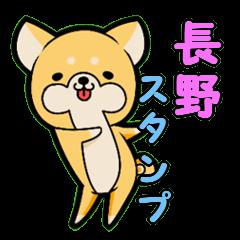 Nagano accent sticker