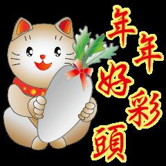 Cute cat fortune-3