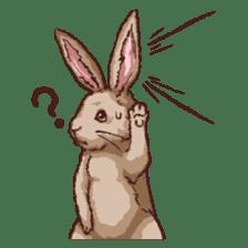 Cute warm fuzzy rabbit sticker #9477857