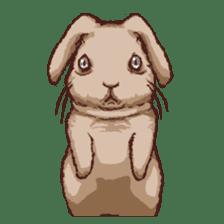 Cute warm fuzzy rabbit sticker #9477860
