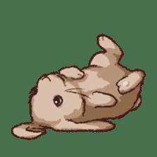 Cute warm fuzzy rabbit sticker #9477861