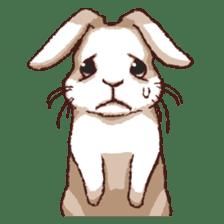 Cute warm fuzzy rabbit sticker #9477871