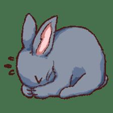 Cute warm fuzzy rabbit sticker #9477882