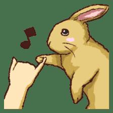 Cute warm fuzzy rabbit sticker #9477884