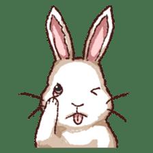 Cute warm fuzzy rabbit sticker #9477889