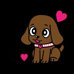 Miss Muddy Puppy