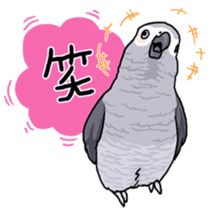 Fuku the Grey Parrot sticker #9542584
